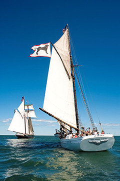 Sail Marthas Vineyard